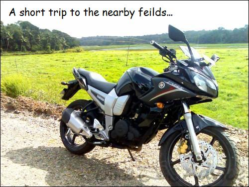 A short trip to the nearby feilds