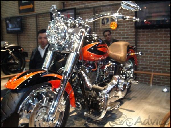Harley Davidson Showcases Customized Bikes At The Auto Expo 2012