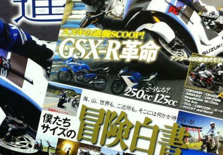 Suzuki-GSX250R (1)