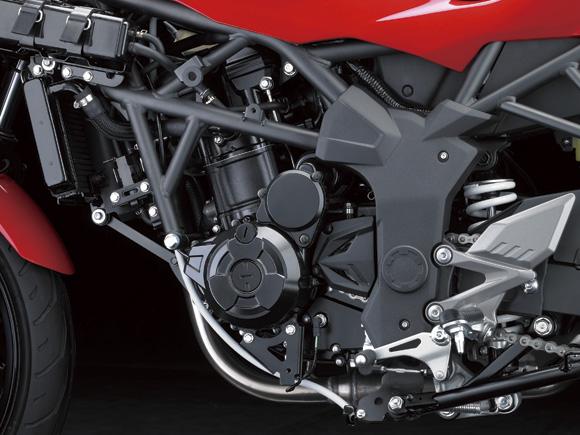 New-Ninja-250RR-Mono-250SL (10)