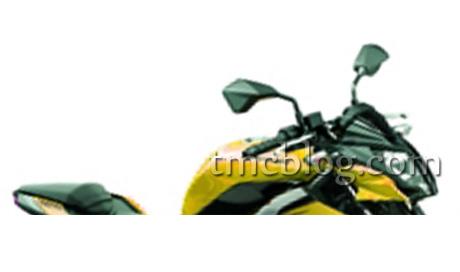 Naked-Kawasaki-RR-Mono