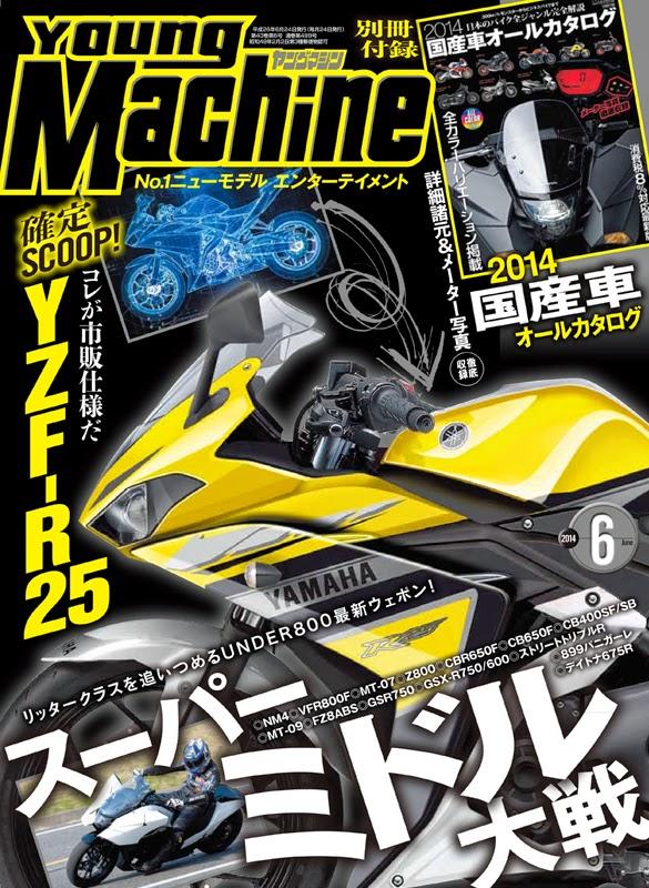 Yamaha-R25-Pic