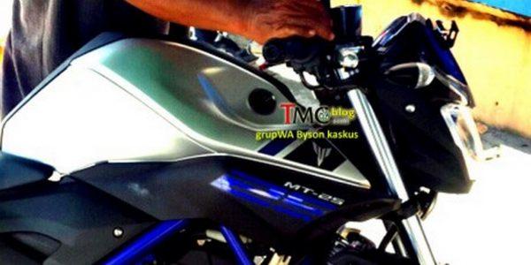 Yamaha MT 25 fuel tank