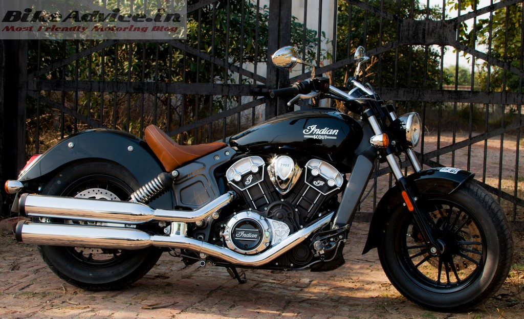 Indian Scout profile