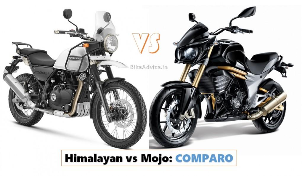 Himalayan vs Mojo Comparo Pic